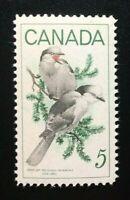 Canada #478 MNH, Wildlife - Gray Jays Stamp 1968