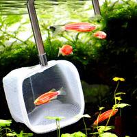 Fish Tank Aquarium 3D Landing Net Square Shrimp Net For Catching Small Fishes US