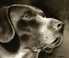 German Shorthaired Pointer Art Print Sepia Watercolor Painting by Artist Djr