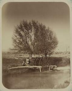 Methods of irrigating fields,Water-pumping wheel,Persian,ditch,Zyrabulak,c 2697