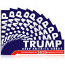 10x/Set Keep America Great Again 2020 Trump President Car Decal Bumper Stickers