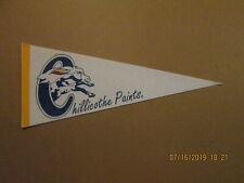 Frontier League Chillicothe Paints Vintage Defunct Circa 1990's Baseball Pennant