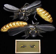 "Rare MENUKI 18-19th C Japanese Edo Antique Koshirae fitting ""Bee"" d980"
