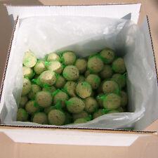 Lot 100 boules de graisse 90g, sans huile de palme, pour oiseaux de la nature