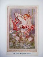 "Vintage ""The Wood Anemone Fairies"" Postcard signed by MARGARET TARRANT *"