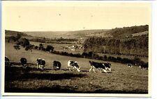CP 61 ORNE - Pontchardon - Aspect caractéristique du pays d'Auge...