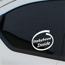 2x Stabyhoun Inside stickers car decal