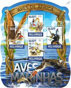 Aquatic Marine Birds / Water Bird Mint MNH Stamp Sheet M/S (2015 Mozambique)