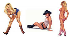 3 PRETTY COWGIRL Cow Girl WILD WEST Western hOT RODEO Pinup STICKERS/Car DECALS