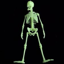 "12"" Skeleton Bones Halloween  Pieces Cake topper Toy Decoration Glow in Dark"