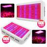600W 1000W LED Grow Lampe Voll Spektrum Pflanzen Licht Wachsen für Blumen Gemüse