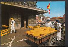 Netherlands Postcard - Alkmaar Kaasmarkt - Cheese Market  B2699