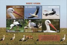 Gambia 2019 MNH White Stork 6v M/S Storks Birds Stamps
