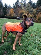 OllyDog Night Viz High Visibility Reflective Dog Vest - Orange (Medium) 1060