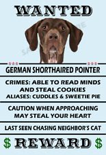 German Shorthaired Pointer Wanted Flex Fridge Magnet 4x6 inches.