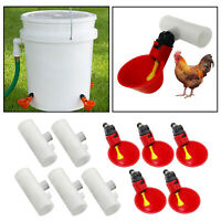 5x polli bevitore d'acqua tazze pollaio bere ciotola di plastica automatica