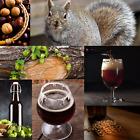 1 Gallon Nano-brew   Squirreled Away Nut Brown Ale [Partial Mash] Recipe Kit