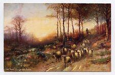 Happy ENGLAND. Berger et ses moutons. Sheep. OILETTE