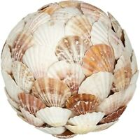 """Decorative Orb Ball Mixed Scallop Flat Shells Sphere Table Top Centerpiece 6"""""""
