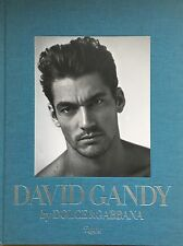 DAVID GANDY Dolce Gabbana Peter Howarth Rizzoli 1ST/1ST HARDBACK NEW SIGNED