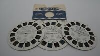 "View-Master Reels - Disney ""Winnie the Pooh - Honey Tree"" 3 Reels 21 Pictures"