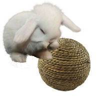 Small Rodent Pet Rabbit Hamster Grass Ball Chew Toy Teeth Cleaning Toy Play