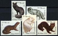 Russia 1980 SG#5008-12 pelliccia STRAPPO Animali Gomma integra, non linguellato Set #D54674