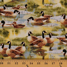 Duck Goose! Canada Geese Ducks Birds Green Cotton Fabric Print by Yard D465.14