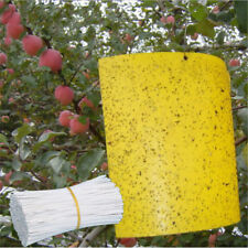 Lots Outdoor Yellow Sticky Glue Flying Pest Insect Papers Traps Catchers Bugs