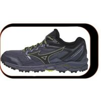 Chaussures De course Running Mizuno Wave Daichi V3 Femme  Référence : J1GK1871 0