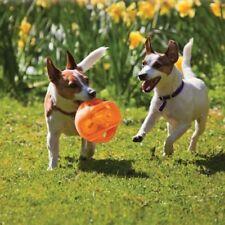 Articles orange en plastique pour chiens moyens