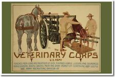 Veterinary Corps - US Army World War I Vintage Art Print POSTER