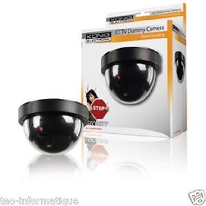 Videocamera Cupola CCTV Finta Interno