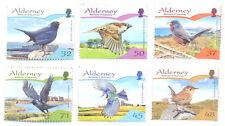 Alderney-birds-passerines-wren-warbler-blackbird-blue tit,jackdaw-sparrow-mnh