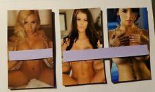 Naked Woman Magnet 3 magnet set