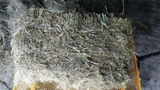 Timothy Hay Small Square Bales, 1lbs Aldercreeks Best, Rabbits, Horses, Lambs