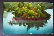 Oxbow Bend, White River, Michigan vintage postcard