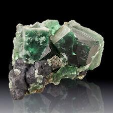 "2.8"" BlueGreen Gemmy ROGERLY FLUORITE Crystals PenetratingTwins England for sale"