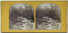 Paysage romantique avec Ruisseau Photo Stereo Stereoview Vintage Albumine