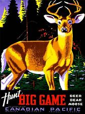 VINTAGE TRAVEL HUNT CANADA DEER ART POSTER PRINT LV5001