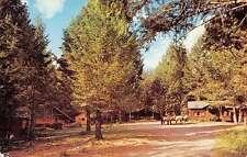 Wapiti Wyoming Goff Creek Lodge Street View Vintage Postcard K51745