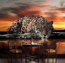 PAPIER Fototapete Fototapeten Natur Tier Tiger Katze Sonnenuntergang  14N126P4