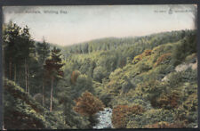 Scotland Postcard - In Glen Ashdale, Whiting Bay  RS6634