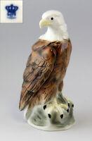 9942207 Porcellana Figura Weißkopfsee-adler Uccello Wagner & Apel H24cm