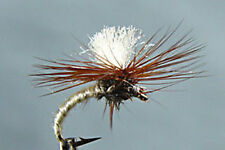 10 x Mouche Klinkhamer Crème H12/14/16 Fliegen mosca LOT dry fly fishing mosca