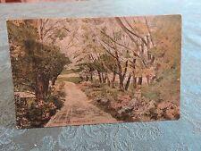 1900s Lovers Lane Bushville Catskill New York NY Post Card