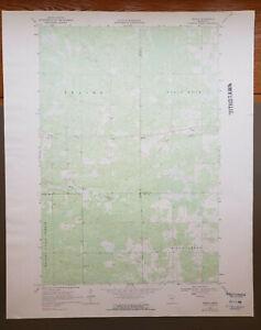 "Ronald, Minnesota Original Vintage 1969 USGS Topo Map 27"" x 22"""