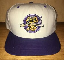 Vintage New Era Charleston Riverdogs Adjustable Hat White Snapback Made In USA