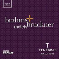 Tenebrae - Brahms and Bruckner: Choral Motets [CD]