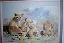 Eric Forlee Original Lion Cub Oil Painting